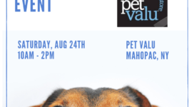 pet valu mahopac adoption